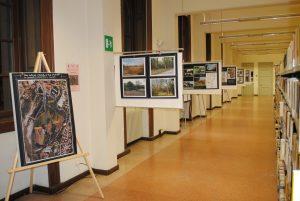 2013-11-13 Mostra biblioteca (2)