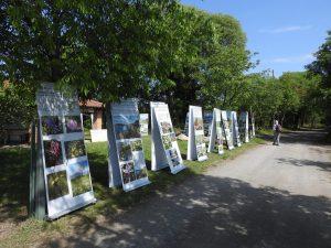 2018-05-06 FAB luoghi verdi del cuore (2)